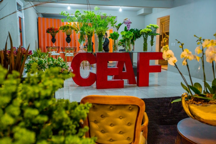 CEAF-24